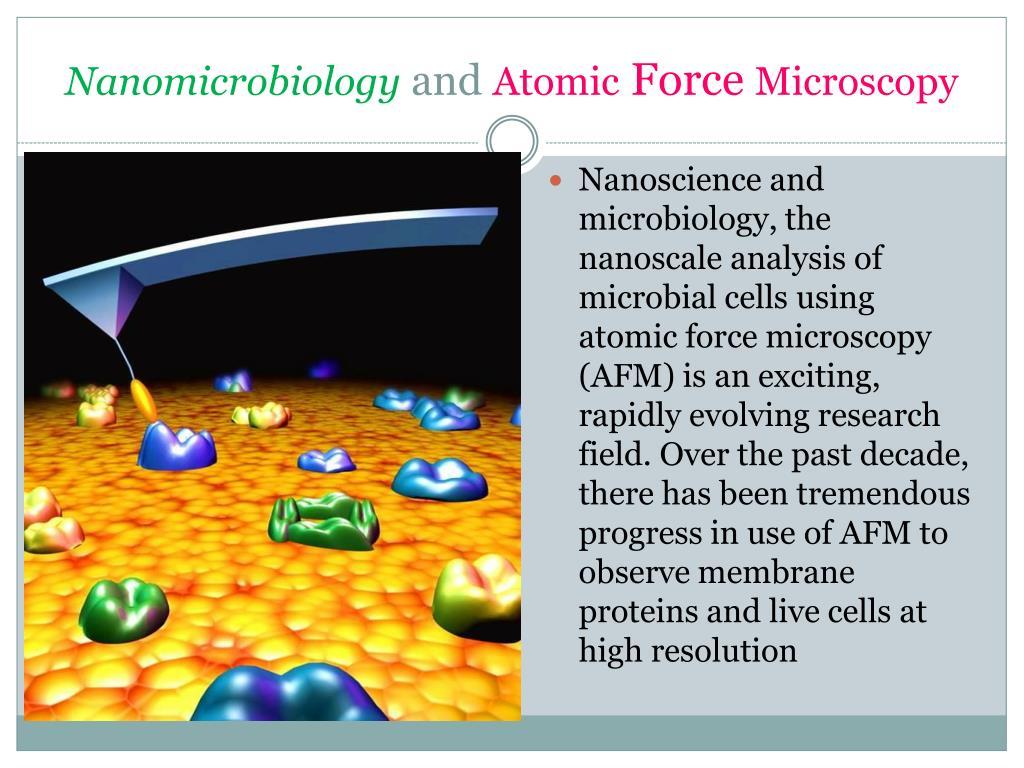 Nanomicrobiology