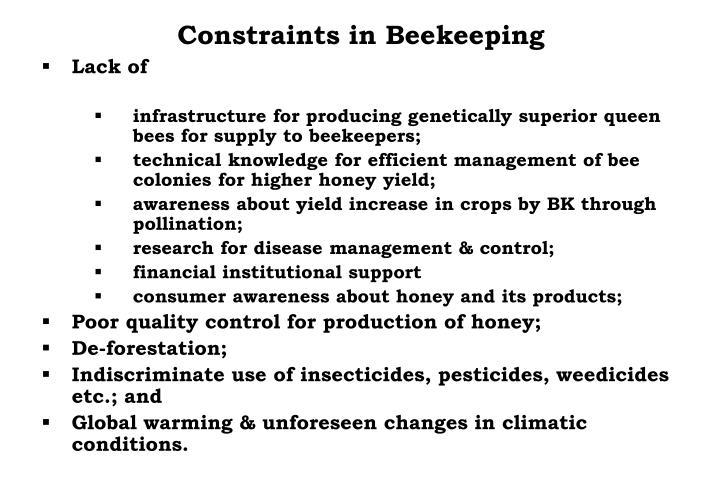 Constraints in Beekeeping