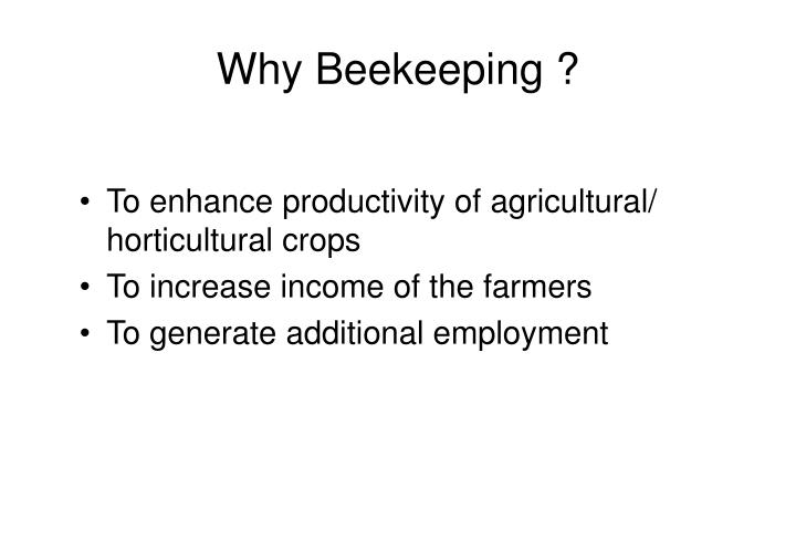 Why Beekeeping ?