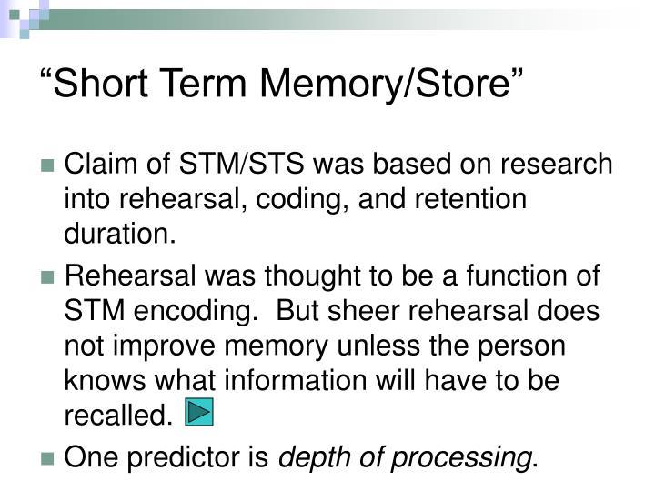 """Short Term Memory/Store"""