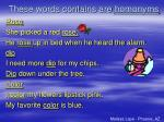 these words contains are homonyms