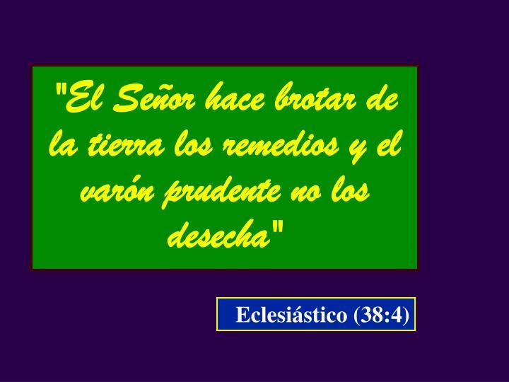 """""""El Señor hace brotar de la tierra los remedios y el varón prudente no los desecha"""""""