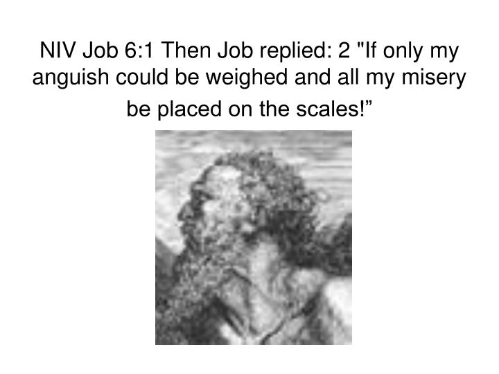 "NIV Job 6:1 Then Job replied: 2 ""If only my anguish could be weighed and all my misery be placed on the scales!"""