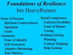 foundations of resilience iris heavyrunner
