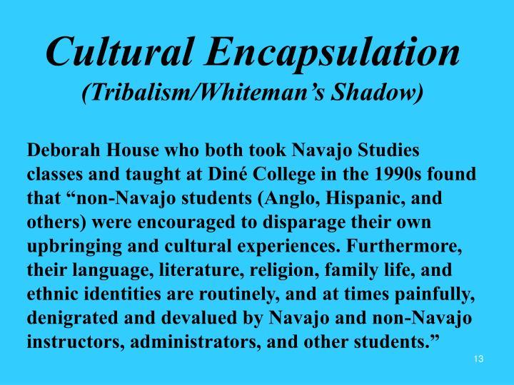 Cultural Encapsulation