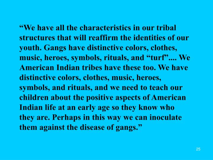 """""""We have all the characteristics in our tribal structures that will reaffirm the identities of our youth. Gangs have distinctive colors, clothes, music, heroes, symbols, rituals, and """"turf"""".... We American Indian tribes have these too. We have distinctive colors, clothes, music, heroes, symbols, and rituals, and we need to teach our children about the positive aspects of American Indian life at an early age so they know who they are. Perhaps in this way we can inoculate them against the disease of gangs."""""""