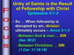 unity of saints is the result of fellowship with christ ephesians 4 1 31