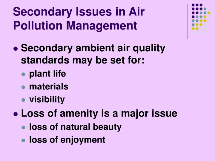 Secondary Issues in Air Pollution Management