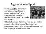 aggression in sport4