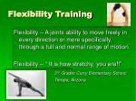 flexibility training