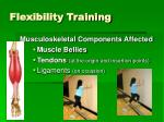 flexibility training3