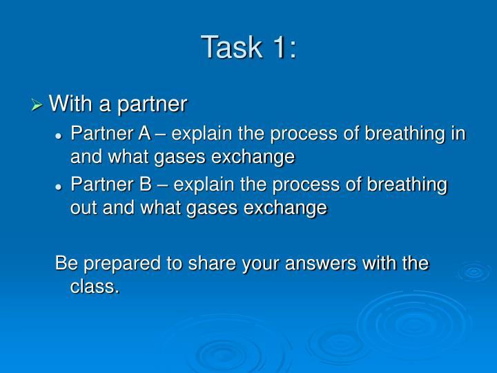 Task 1: