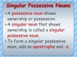 singular possessive nouns6