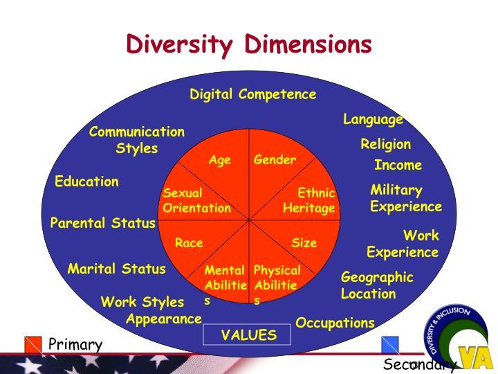 Diversity Dimensions