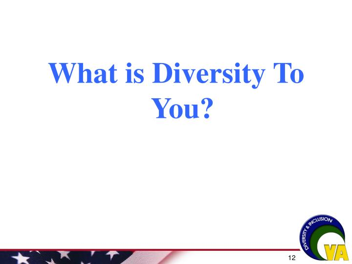 What is Diversity To You?