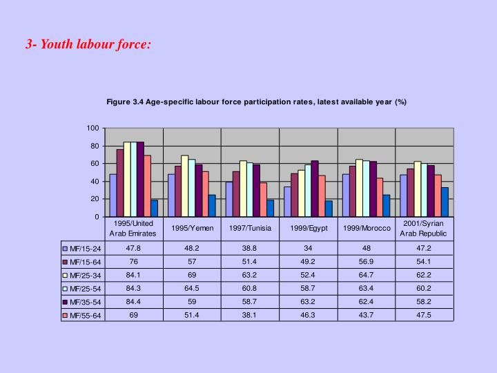 3- Youth labour force: