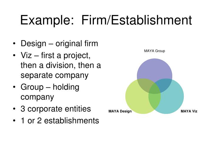 Example:  Firm/Establishment