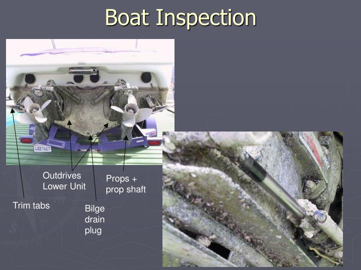 Boat Inspection