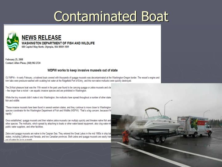Contaminated Boat