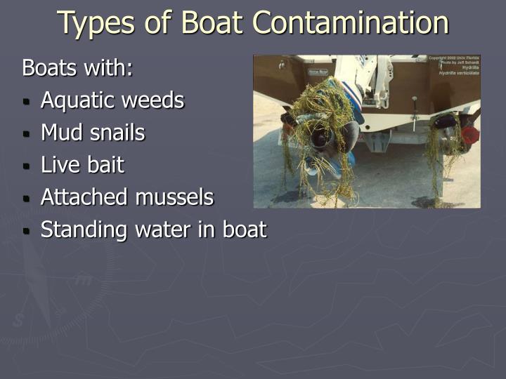Types of Boat Contamination