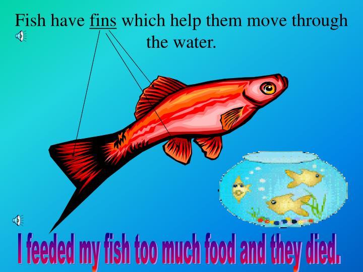 Fish have