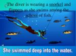 the diver is wearing a snorkel and flippers as she swims among the school of fish