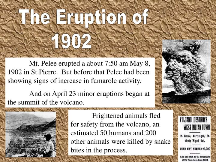 The Eruption of