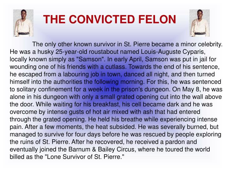 THE CONVICTED FELON