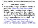 coastal bend prescribed burn association8