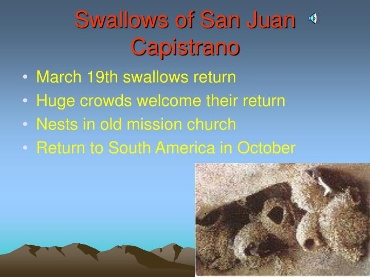 Swallows of San Juan Capistrano