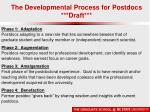 the developmental process for postdocs draft