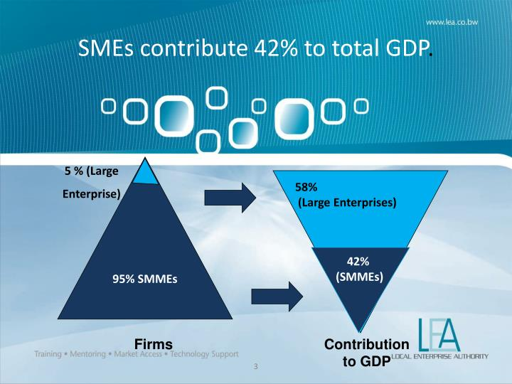 SMEs contribute 42% to total GDP