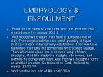 embryology ensoulment