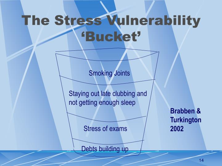 The Stress Vulnerability 'Bucket'