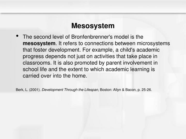 Mesosystem