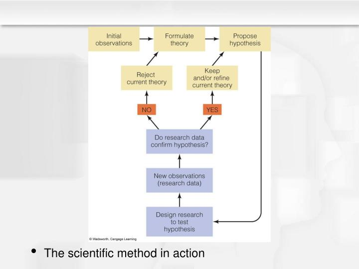The scientific method in action