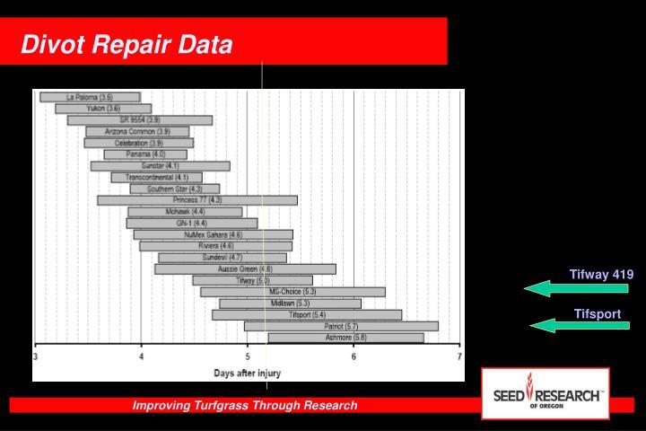Divot Repair Data