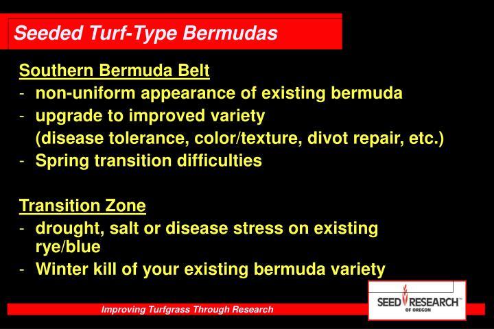 Southern Bermuda Belt