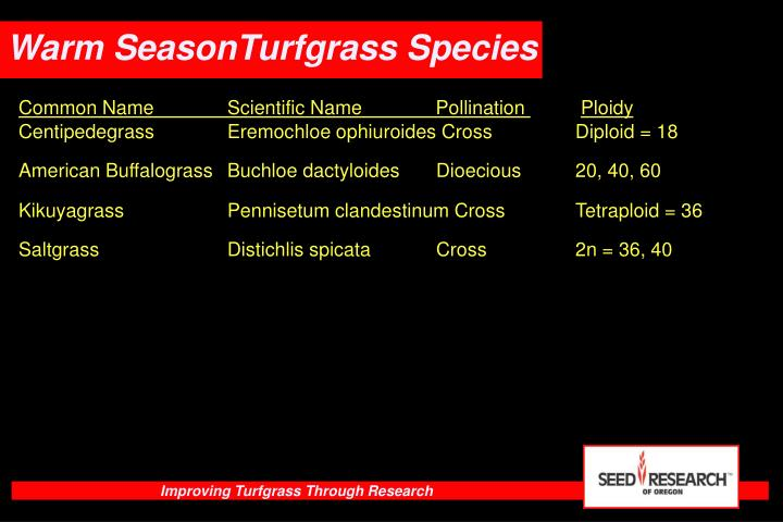 Warm SeasonTurfgrass Species