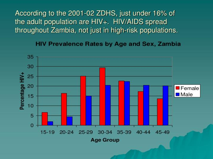 According to the 2001-02 ZDHS, just under 16% of the adult population are HIV+.  HIV/AIDS spread throughout Zambia, not just in high-risk populations.