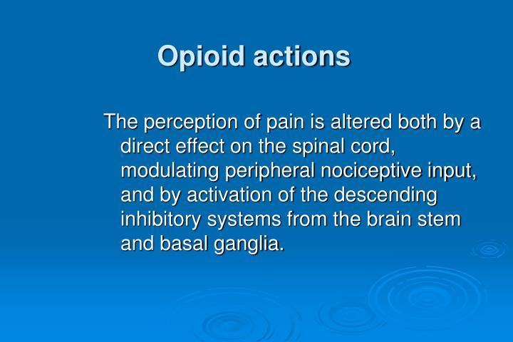 Opioid actions