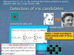 detection of iris candidates