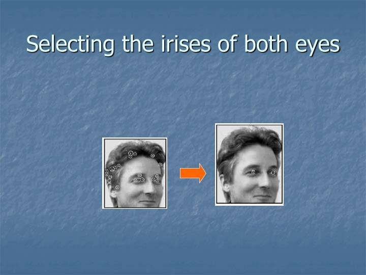 Selecting the irises of both eyes