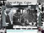 bay of pigs cuba april 17 1961