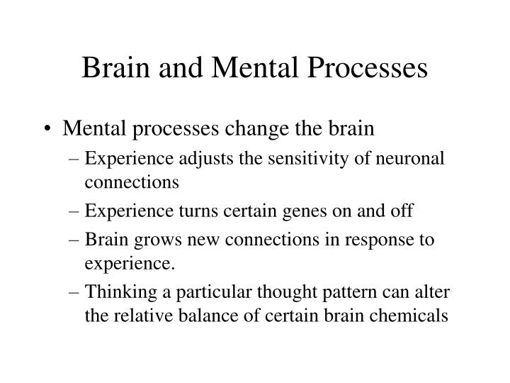 Brain and Mental Processes