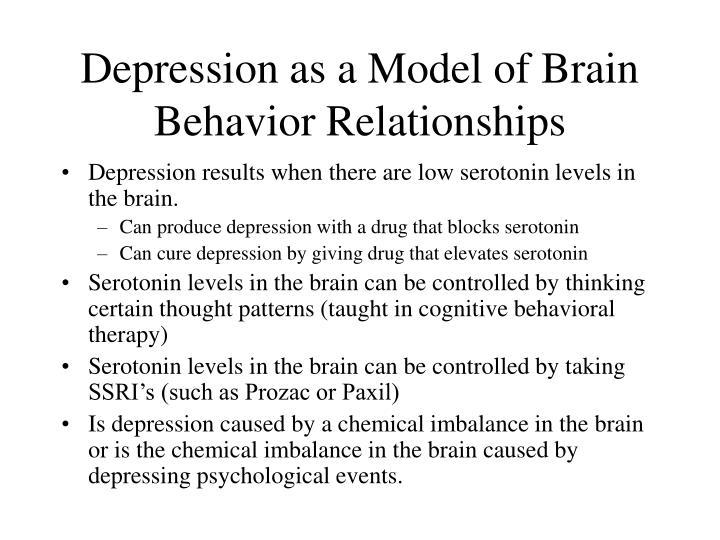 Depression as a Model of Brain Behavior Relationships