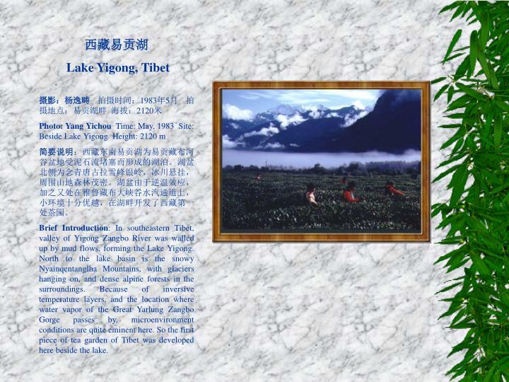 西藏易贡湖