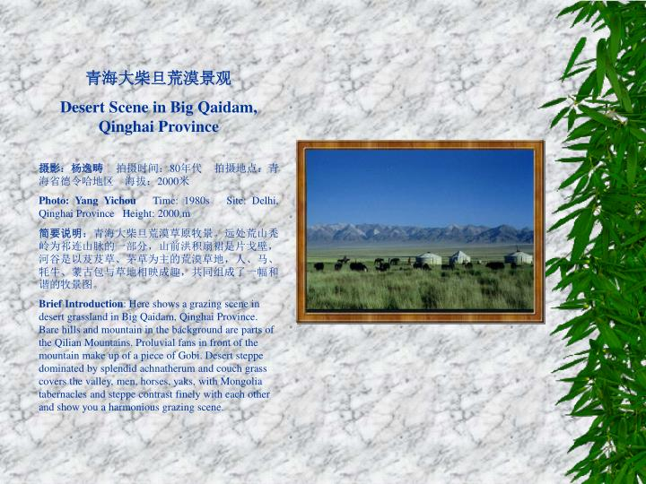 青海大柴旦荒漠景观