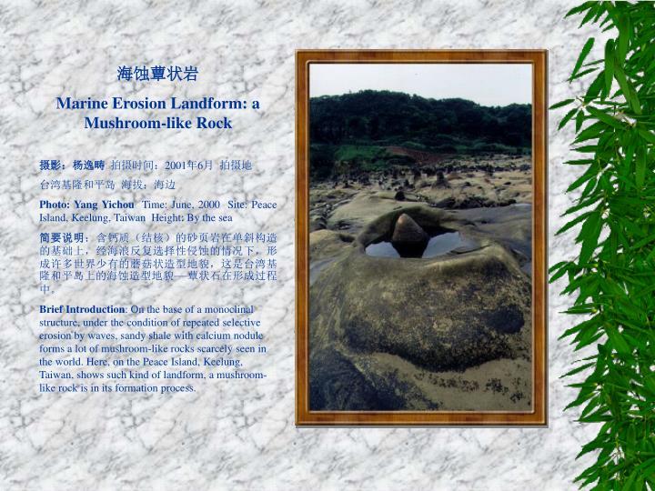 海蚀蕈状岩