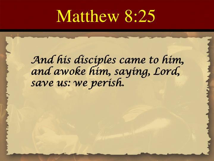 Matthew 8:25